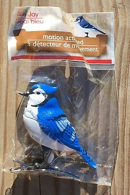 Motion Activated Bird Blue Jay Chirping Sounds New In Package
