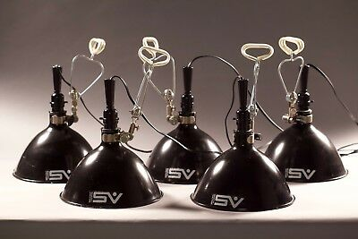 Smith Victor Scoop Lights, Black Set of Five Lights