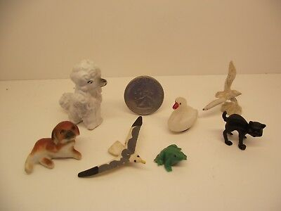 1:12 Scale Miniature Dollhouse Mixed Assorted Lot #2 Animals Dog Frog Bird Cat