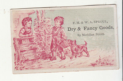 F M & W A Sproul Dry Goods Meridian Street Boy Dog Basket Vict Card c 1880s