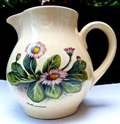 Vintage Holkham Pottery Cream Milk Jug with Bellis Perrenis Daisies Collectable