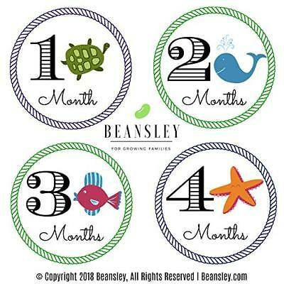 BEANSLEY Boys Monthly Stickers New Born Party Baby Shower Milestone HOT H7