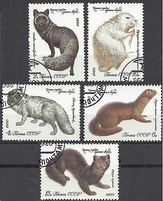 Russia 1980 FUR ANIMALS Complete Set(5) FineUsed (CTO with gum) SG 5008-12