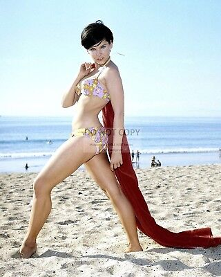 Actress Yvonne Craig Pin Up - 8X10 Publicity Photo (Zz-484)