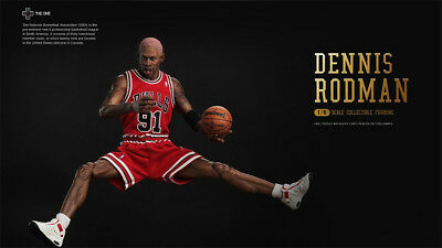 e9d61e096cc527 The One 1 6 NBA superstar The Worm Dennis Rodman hot action figure toys in