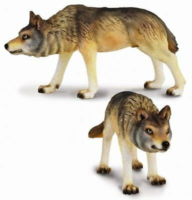Collecta Animali Selvaggi Wild Life Lupo A Caccia Timber Wolf Hunting 88342