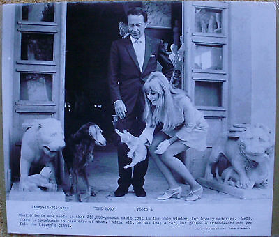 """Photo Print """"The Bobo"""", Story-in-Pictures, Photo 4"""