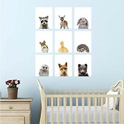Palace Learning Set of 5 Woodland Animal Poster Prints - Baby Forest Animal Art