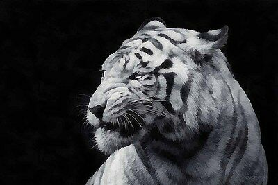 Living Room Art Wall Decor Black White Tiger Oil Painting HD Printed On Canvas