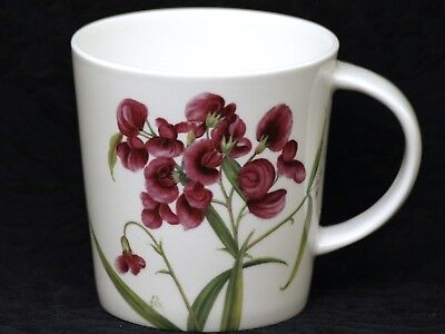STECHCOL GRACIE SWEET PEA MATUCANA Bone China V Shape Mug