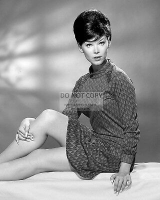 Actress Yvonne Craig Pin Up - 8X10 Christmas Publicity Photo (Aa-501)