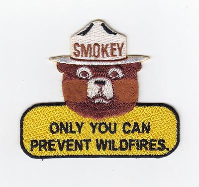 New Smokey the bear, excellent quality, rare vintage design, Firefighting patch