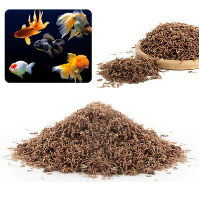 10~60g Freeze Dried Blood Worm Fresh Tropical Fish Discus Tetra Feeding Food Hot