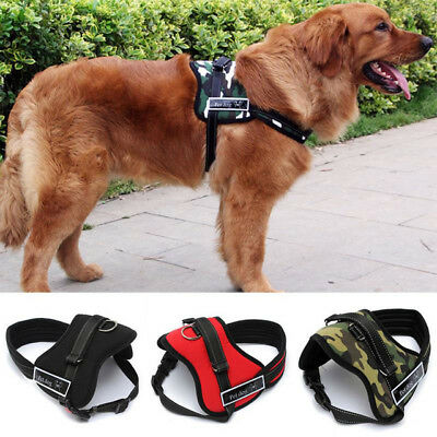 Pet Dog Puppy Soft Leash VEST Breathe Adjustable Harness Braces Clothes Training