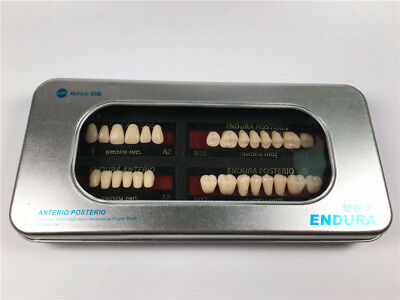 1 Set Dental SHOFU ENDURA Denture False Teeth Resin A2 Shade Size M32 28pcs/Box