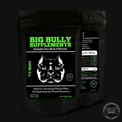 Big bully supplements HMB-ca  (dog muscle builder)