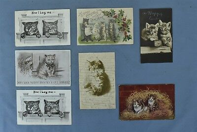 Antique  MIXED LOT of 7 POSTCARDS KITTENS CATS COMIC 1908 #04969