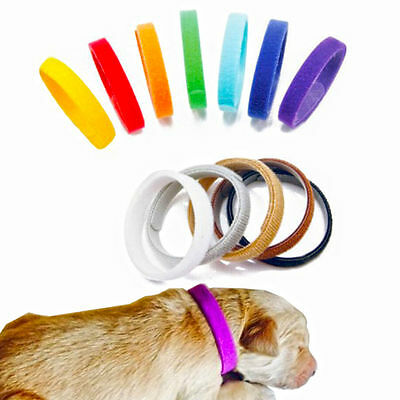 12pcs Colorful Pet Puppy Dog Identification Collar Whelping ID Collar Bands Z