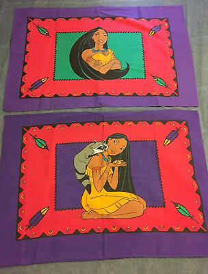 Pocahontas Pillow Case pair with Meeko the racoon, standard size, purple
