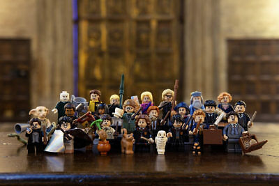 Harry Potter™ and Fantastic Beasts™ Minifigures™ (71022)-Choose your Minifigure