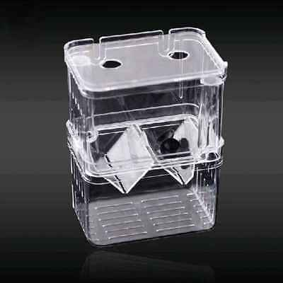 Aquarium Fish Breeding Breeder Baby Newborn Net Trap Box