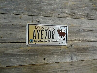Montana specialty license plate Montana Rocky Mountain Elk Foundation MT plate