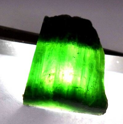91 Ct Natural Translucent Green Serpentine Earth Mined Facet Slab Rough