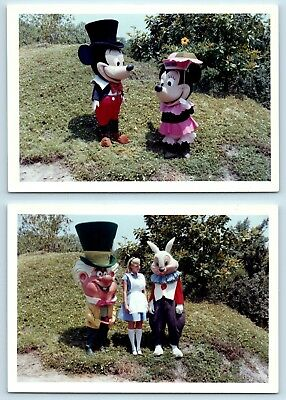 Mickey Minnie Mad Hatter Alice & Rabbit - 1963 Disneyland Vtg Photo Snapshot Lot