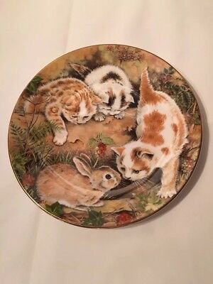 """Royal Worcester Bone China Plate """"BUNNY CHASE"""" by Pam Cooper - Nice! NEW in BOX!"""