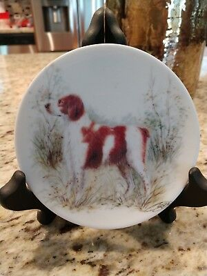 Brittany Spaniel Collectible Plate