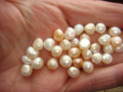 32 natural pearls loose undrilled some with rose over tone ,less then £2.00 each