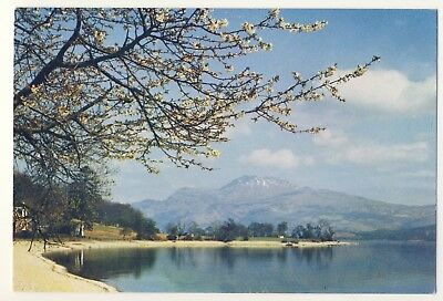 Old Postcard - Loch Lomond and Ben Lomond, from Luss - Unposted M191