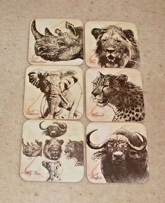 Gorgeous South Africa The Big Five Lion Buffalo Leopard Rhino Elephant Coasters
