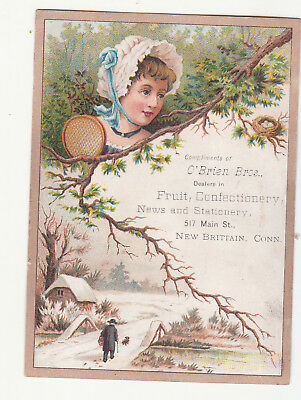 O'Brien Bros Fruit Confectionery News Stationery New Britain CT Vict Card c1880s