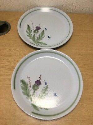 A Pair Of Vintage Buchan Scottish Thistle Plates
