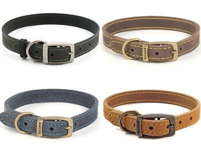 Ancol Timberwolf Leather Dog Collars & Leads All Sizes