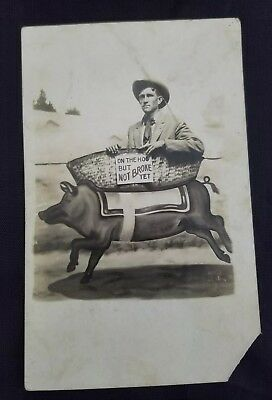 """Antique Real Photo Postcard """"on The Hog But Not Broke Yet"""" Novelty Card"""