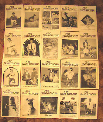 20 VINTAGE ITALIAN GREYHOUND DOG MAGAZINES (A) Issues from 86, 87, 88, 89,90 &91