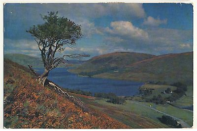 Old Postcard - St Mary's Loch & Tibbie Shiels Inn, Selkirk-shire - Posted M032