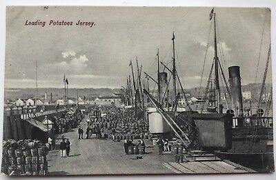 Lovely Vintage R/P card- Jersey, Loading Potatoes, posted 1906