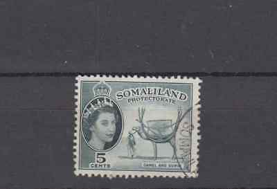 Somaliland Protectorate 1953 5 Cents Definitive Fine Used