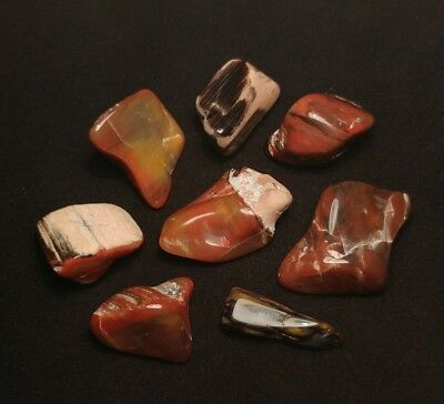 ~ARIZONA RAINBOW PETRIFIED WOOD~  (300ct's)TUMBLED/POLISHED QUALITY MATERIAL!!!