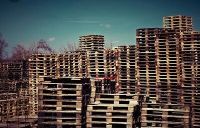 20x Lightweight Standard Pallets 1200x100 Other Sizes Available Free Delivery