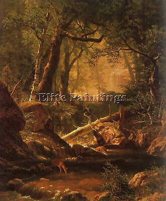 Bierstadt14 Artist Painting Reproduction Handmade Oil Canvas Repro Wall Art Deco