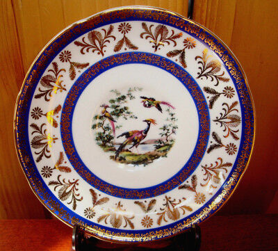 Royal Grafton Bird Of Paradise With Cobalt Blue Color Trim With Gold Filigree