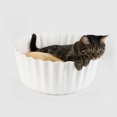 Metal Personalized Pet cat dog Tag Custom Stripes Key ring Name Tags butterfly
