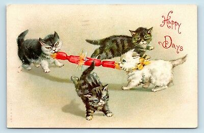 SCARCE c1908 HELENA MAGUIRE ARTIST SIGNED CAT POSTCARD - KITTENS PLAYING - E3
