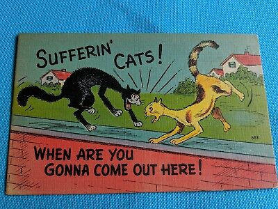 Cat vintage postcard. Cats fighting on wall. Comic postcard.