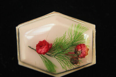 Vintage RETRO Pink Celluloid Resin Dome Red Green DRIED FLOWER BROOCH Pin