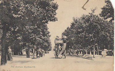 Vintage Postcard Of The Avenue Eastbourne Sussex Posted 1906.